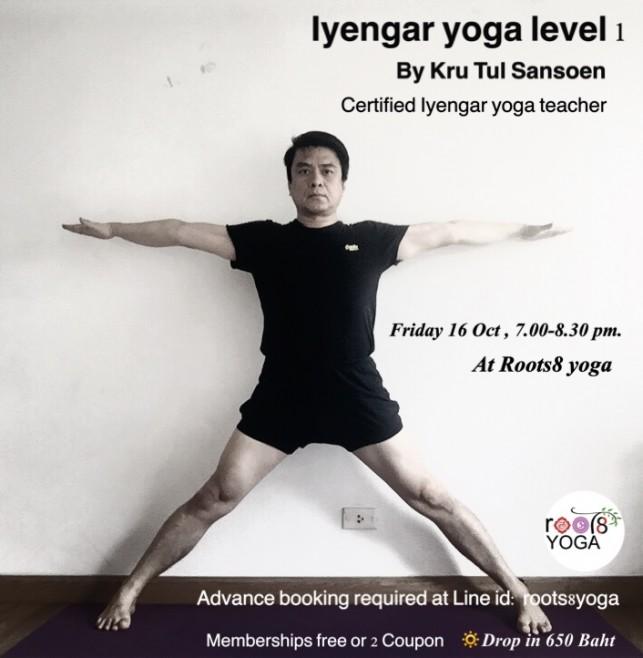Iyengar yoga level1